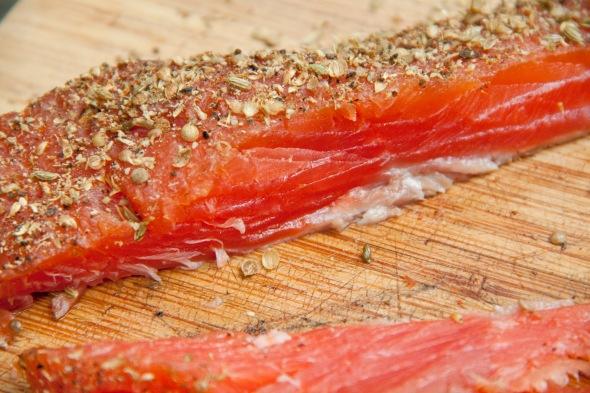 salmon_infocus